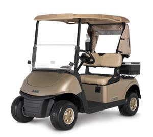 FLEET-RXV-Ezgo-Golf-Cart-Houston-2
